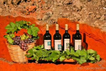 ETNA, WINERY AND NAXOS